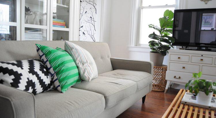 10670924375_a8357886ef_b_living-room-pillows