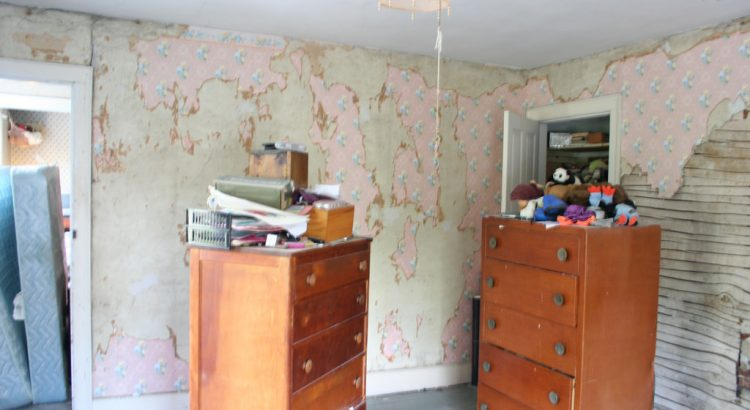 3520256866_31062ed25e_b_DRESSER-with-wallpaper-and-paint